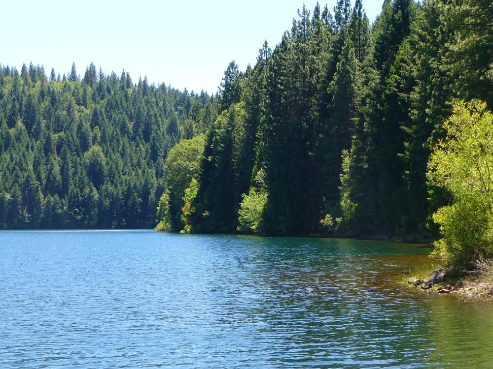 Sugar Pine Reservoir Campout 6/13