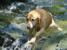 Ben in Passe Creek