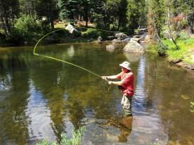 fly fishing at silver creek