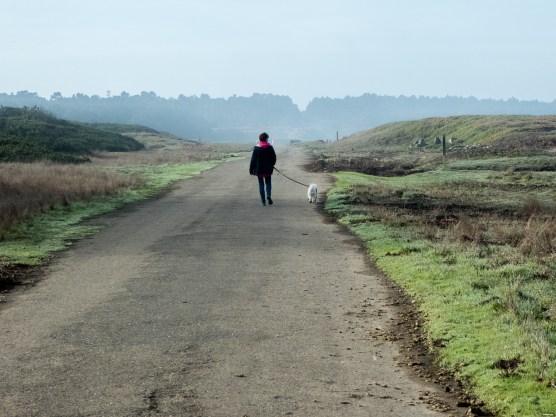 Walking/bike trail