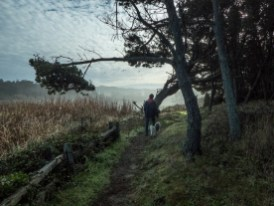 Lake cleone trail