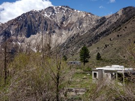 Convict Lake campground with Mt. Morrison in the background