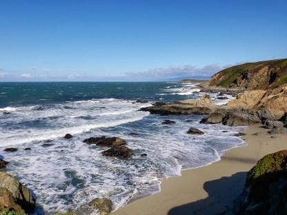 From Bodega Head