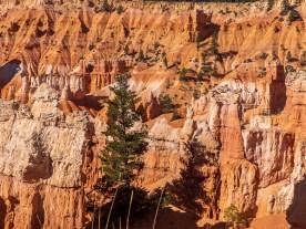 Bryce national Park