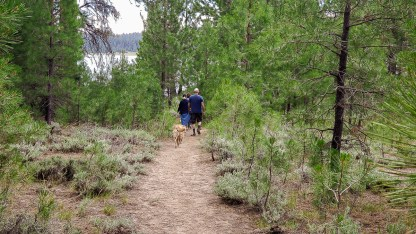Path to lake Davis
