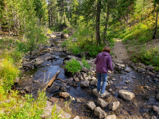 Mt. Lola trail