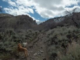 Ben hiked 4 miles (2 steep climb)