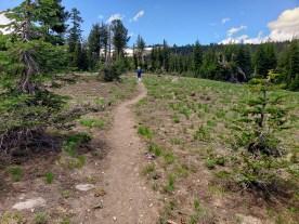 Mt Lola hike