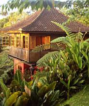 Sarinbuana Eco Lodge Bali