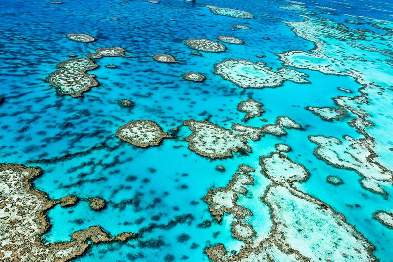 Four Wonderful Dive Adventures