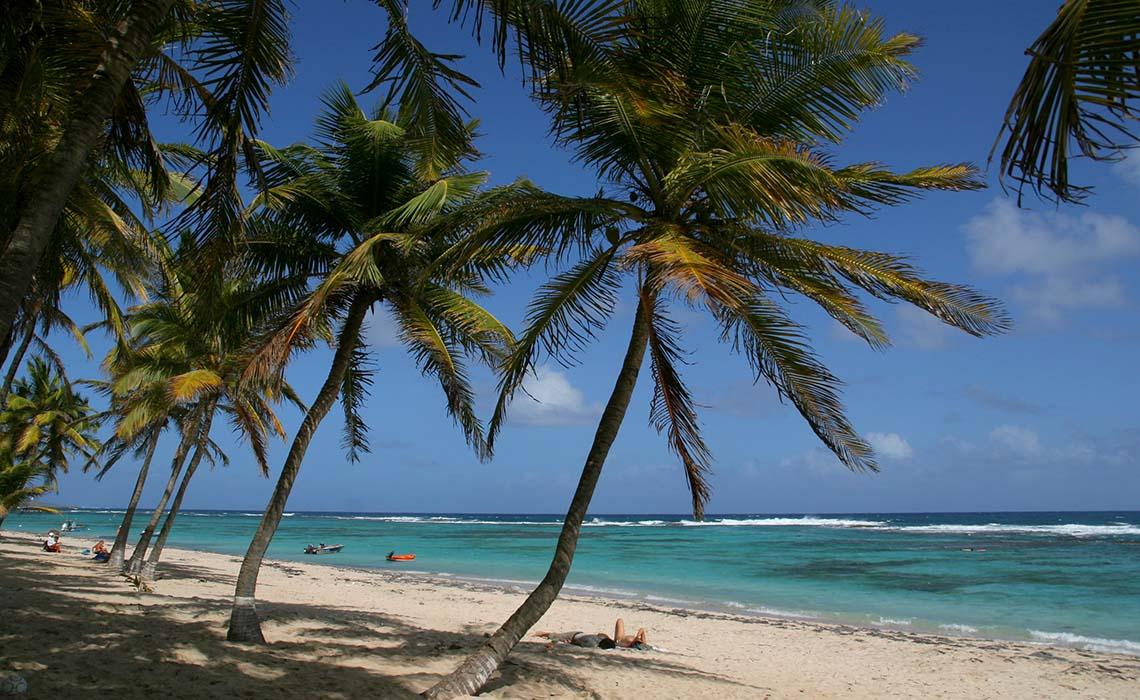 Exploring Guadeloupe Archipelago