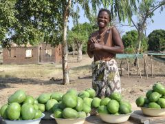 Travel to Landlocked Malawi