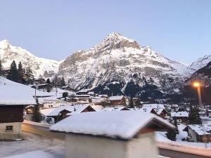 Landscape and nature at Grindelwald valley