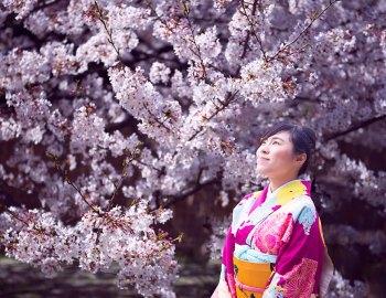 Cultural Japan