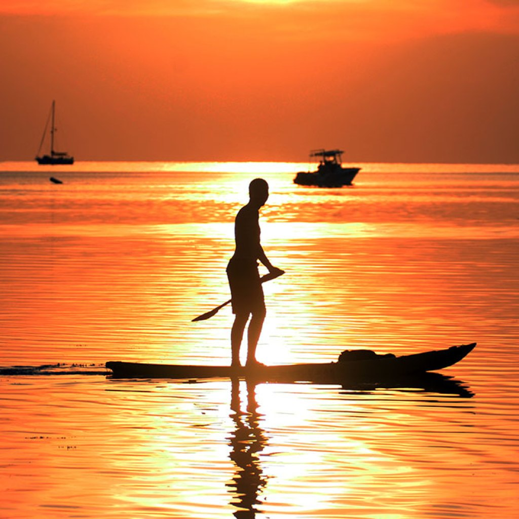 Paddleboarding in the Sunset