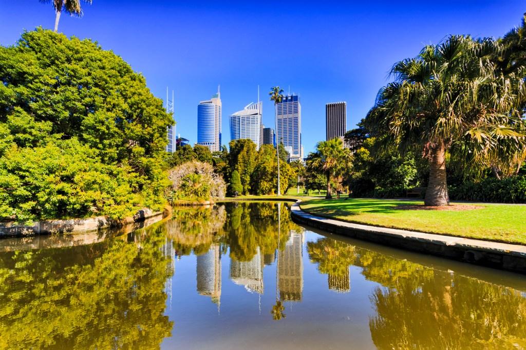 Royal Botanic garden pond