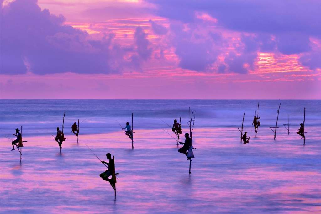 Fishermen on stilts in the silhouette at sunset in Galle, Sri Lanka