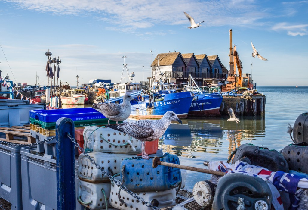Whitstable Harbour, Kent.