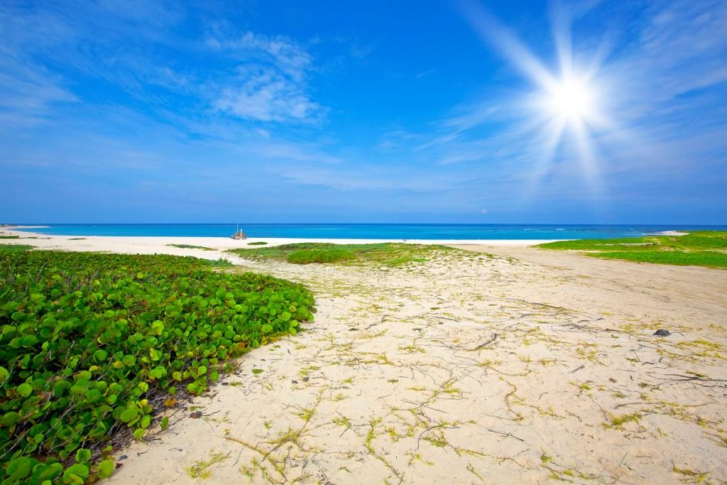 Boca Grandi, Aruba