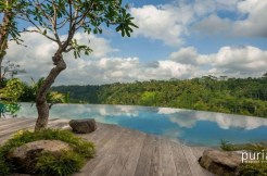 Villa Hartland Estate - Swimming pool