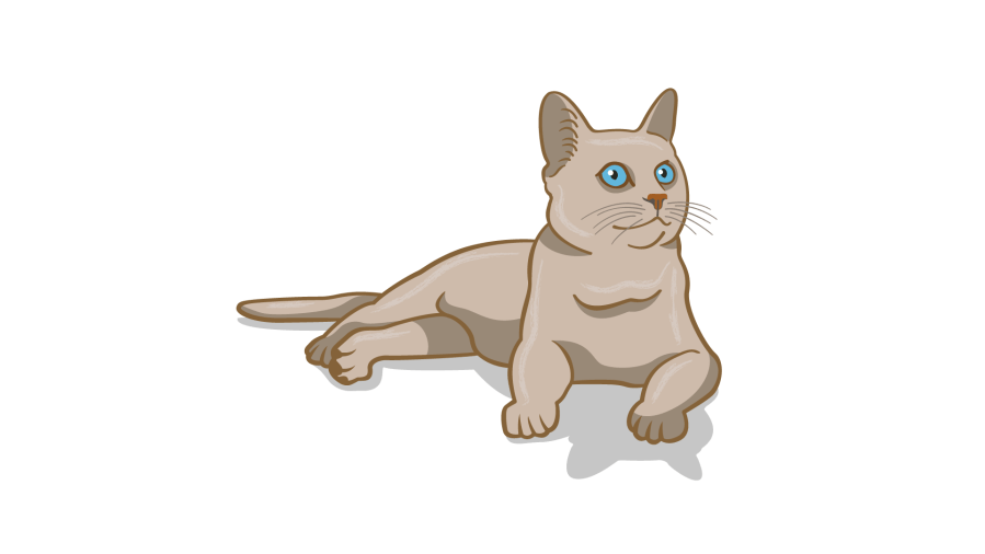 bahasa tubuh kucing yang santai