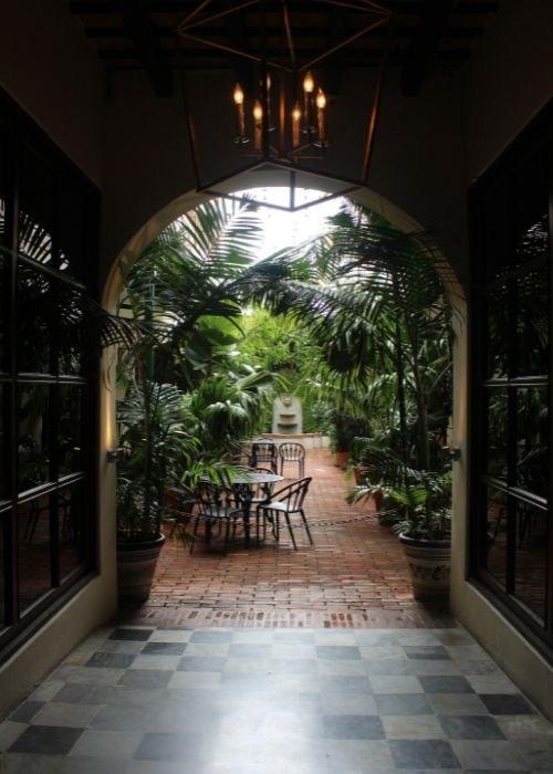 plantas terraza restaurante