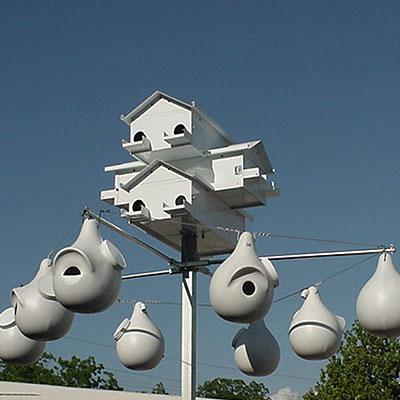 lonestar pole add a gourd rack system