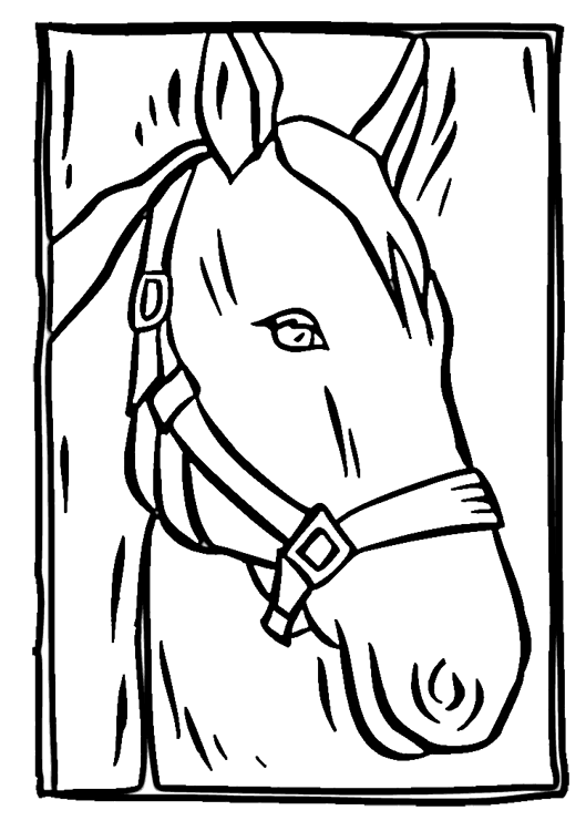 Coloring Page Horse Head | Coloring Page for kids