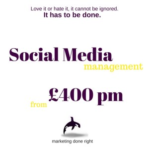 Social Media Management from £400 per month