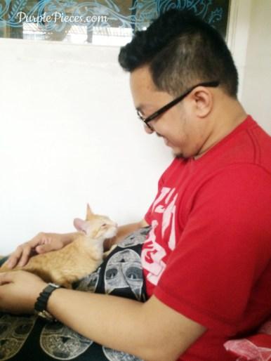Miao Cat Cafe PH
