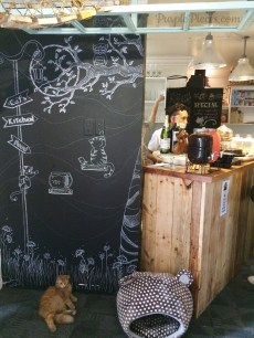 Miao Cat Cafe Philippines