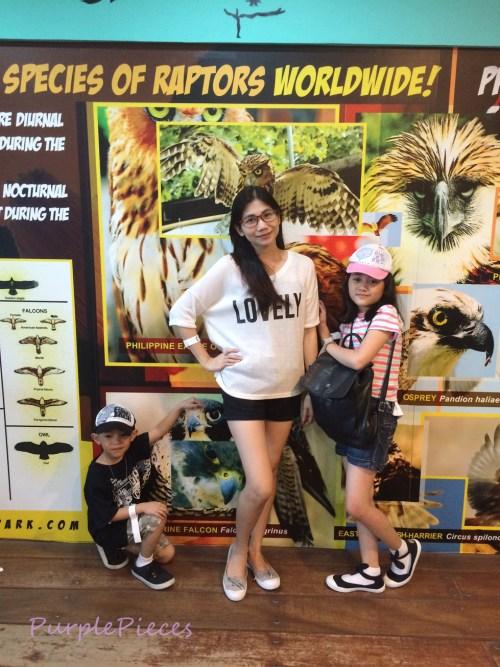 Birds of Prey Manila Ocean Park