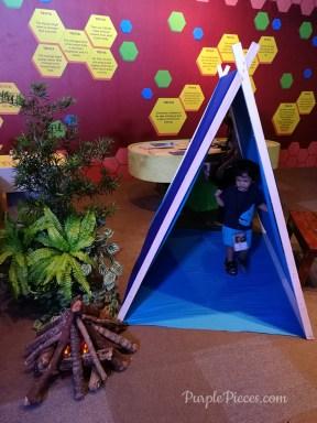 Safeguard-Adventure-Camp-Camping-Tent