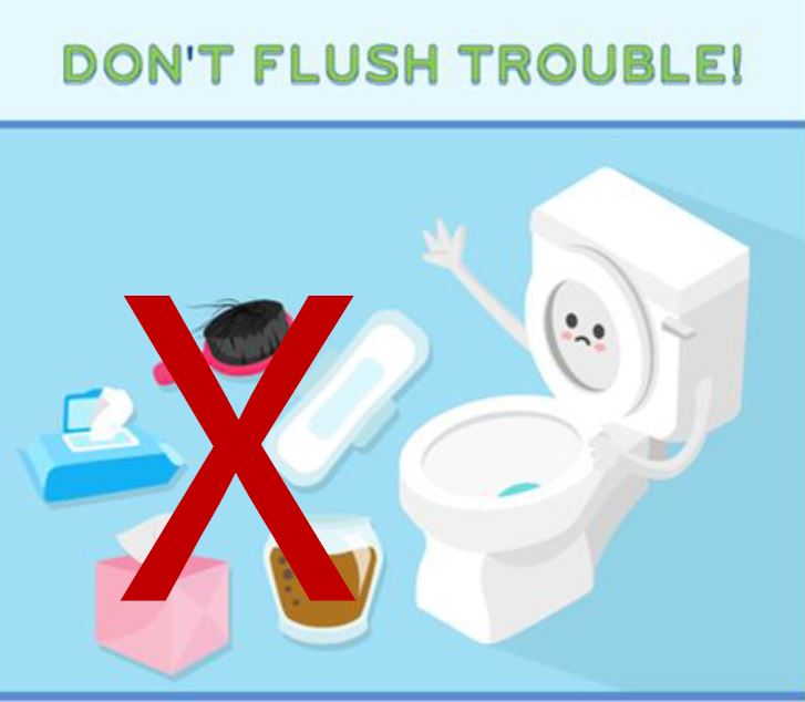 Dont flush Solid Waste