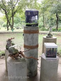 Terrarium Vivarium Exhibit Hortikultura 2018