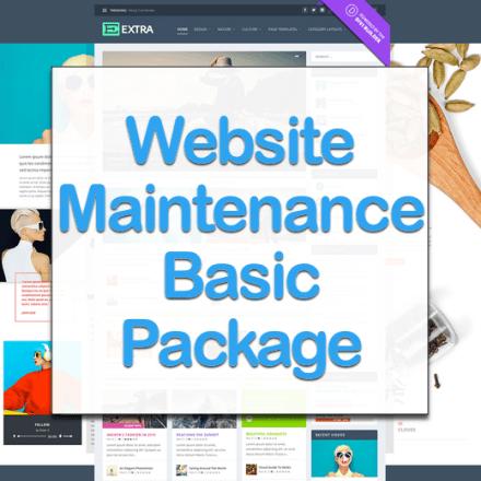 Website Maintenance – Basic