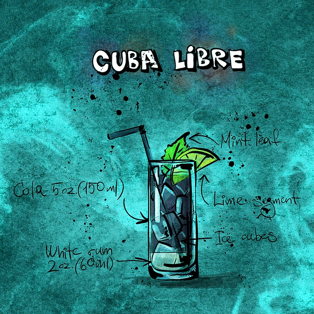 Cuba Libre Best Cocktails In Vienna
