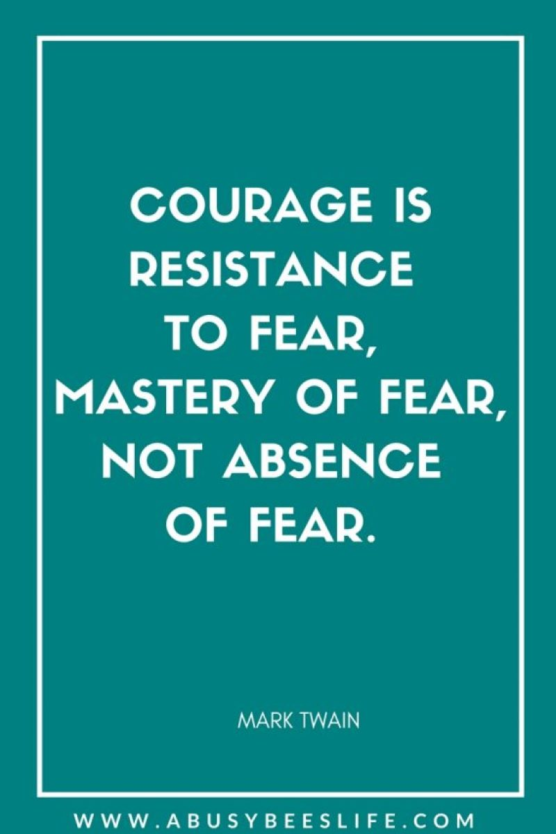 Quote COURAGE IS RESISTANCE TO FEAR, MASTERY OF FEAR, NOT ABSENCE OF FEAR. abusybeeslife on Pinterest