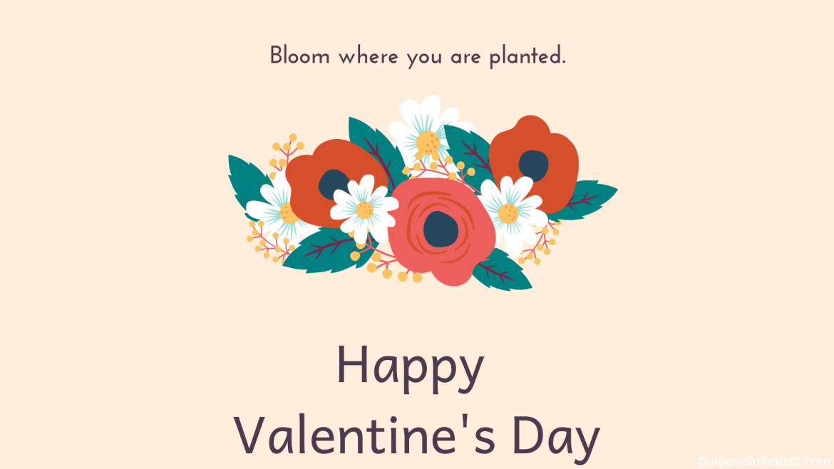 Free Valentine's Day Desktop Wallpapers, Happy Valentine's Day, Bloom where you are planted, Purposefulhabits.com