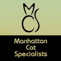 Manhattan Cats