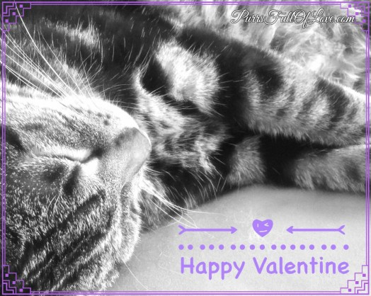 Valentine's Day Edit with Fotor