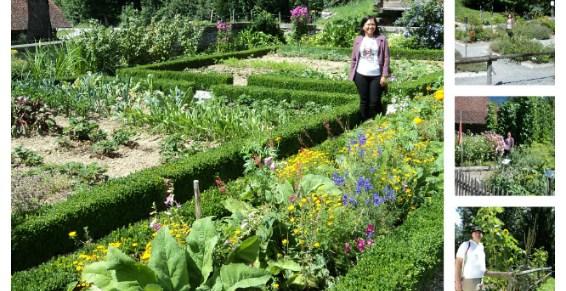 We Really Love Garden