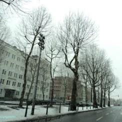 Pemandangan di Pusat Kota Mannheim