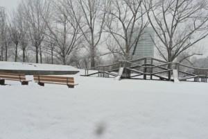 Berselimut Salju, Salah Satu Taman di Mannheim