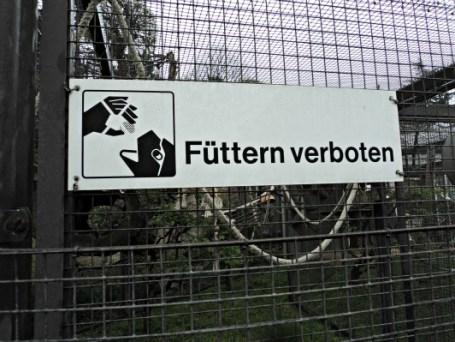 Dilarang Memberi Makanan