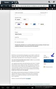 Pilih Metode Pembayaran, isi datanya, JANGAN lupa dibagian bawah klik PURCHASE