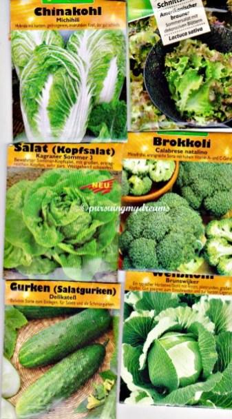 Benih Bibit Sayuran seperti Sawi, salat, Brokoli, ketimun dan Kol