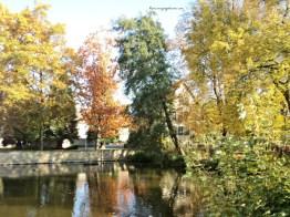 Sudut lain Wasserschloss Bad Rappenau