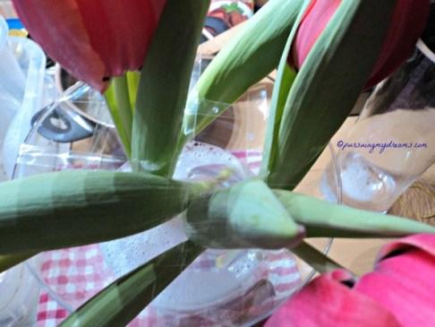 Tip Membuat Penyangga vas pada bunga Potong