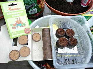 Coconut coir. Quelltabs. Media Tanam untuk bibit tanaman yang kecil sperti untuk bibit cabe, tomat, stroberi dll
